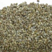семена эспарцета Сорт Песчаный 1251