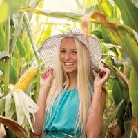 кукуруза гибрид Гримальди фото