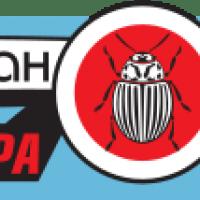 Инсектицид Канонир купить в Украине