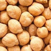 Купить инокулянт для чечевицы и нута в Украине