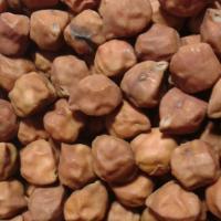 Семена нута коричневого