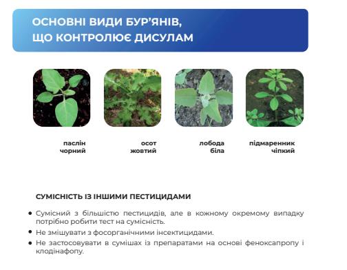 Гербицид Дисулам чувствительные сорняки