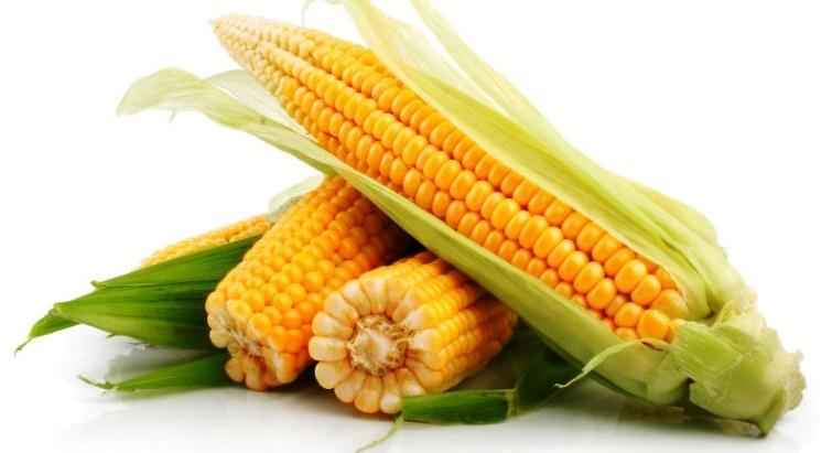 кукуруза гибрид ЕС Перспектив семена