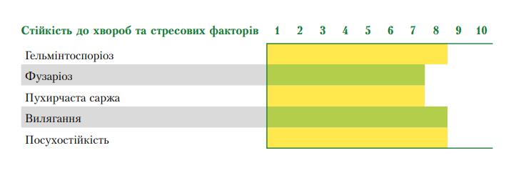 Гибрид кукурузы ВН 6763 устойчивость