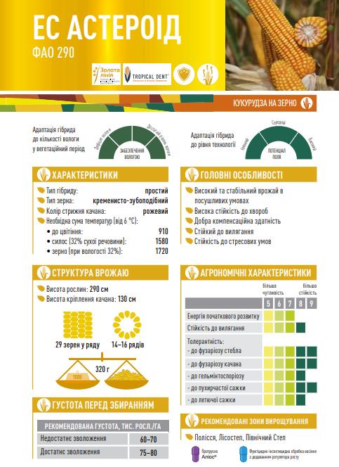 Гібрид кукурудзи ЄС Астероїд опис