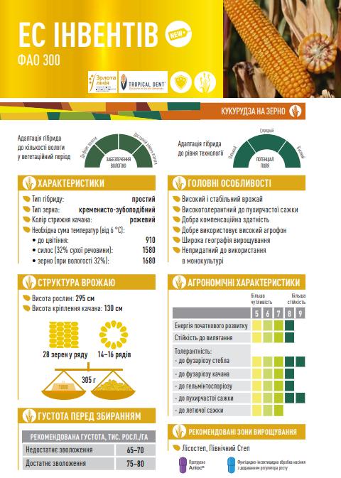 Гібрид кукурудзи ЄС Інвентив опис