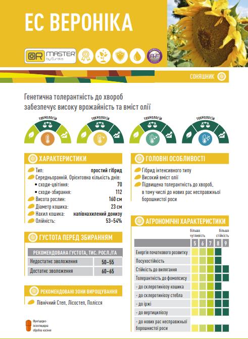 Гібрид соняшнику ЄС Вероніка опис