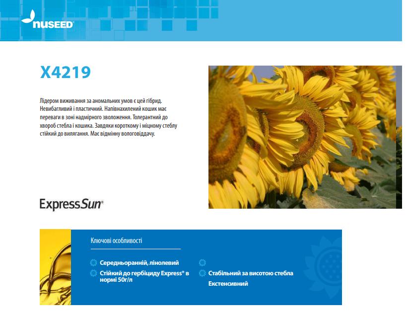 Гібрид соняшнику X4219 опис