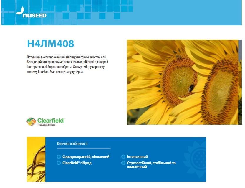 Гібрид соняшнику N4LM408 опис