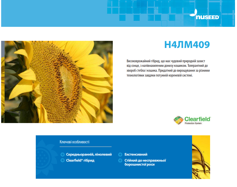 Гібрид соняшнику N4LM409 опис