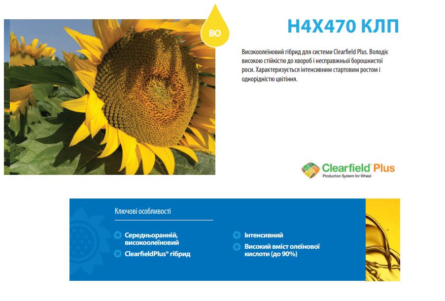 Соняшник Н4Х470 КЛП опис