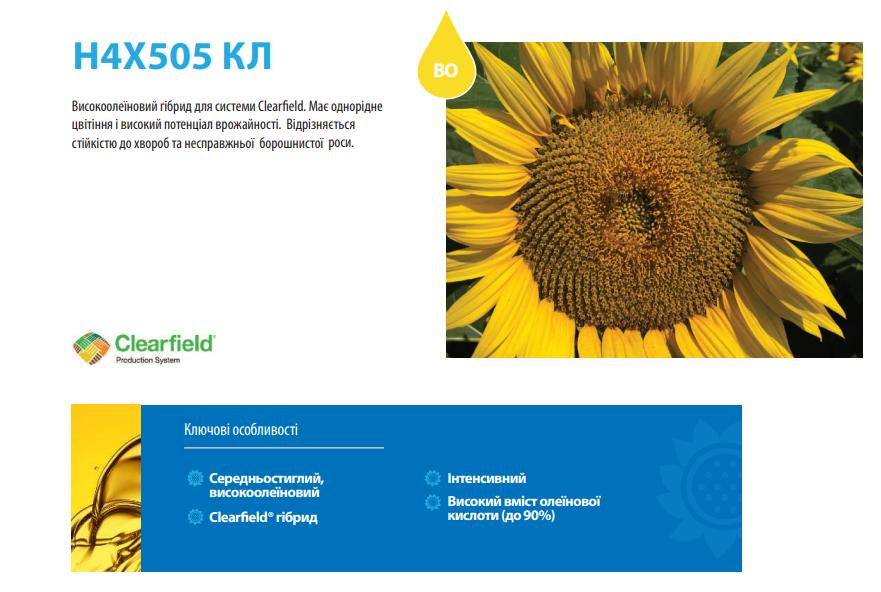 Соняшник Н4Х505 КЛ опис
