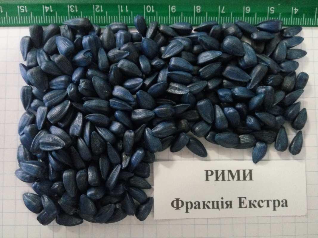 Семена подсолнечника Рими